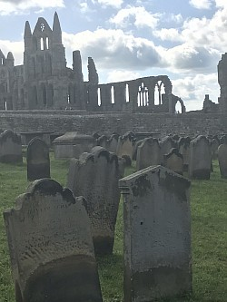 Old Church Ruin at Whitby